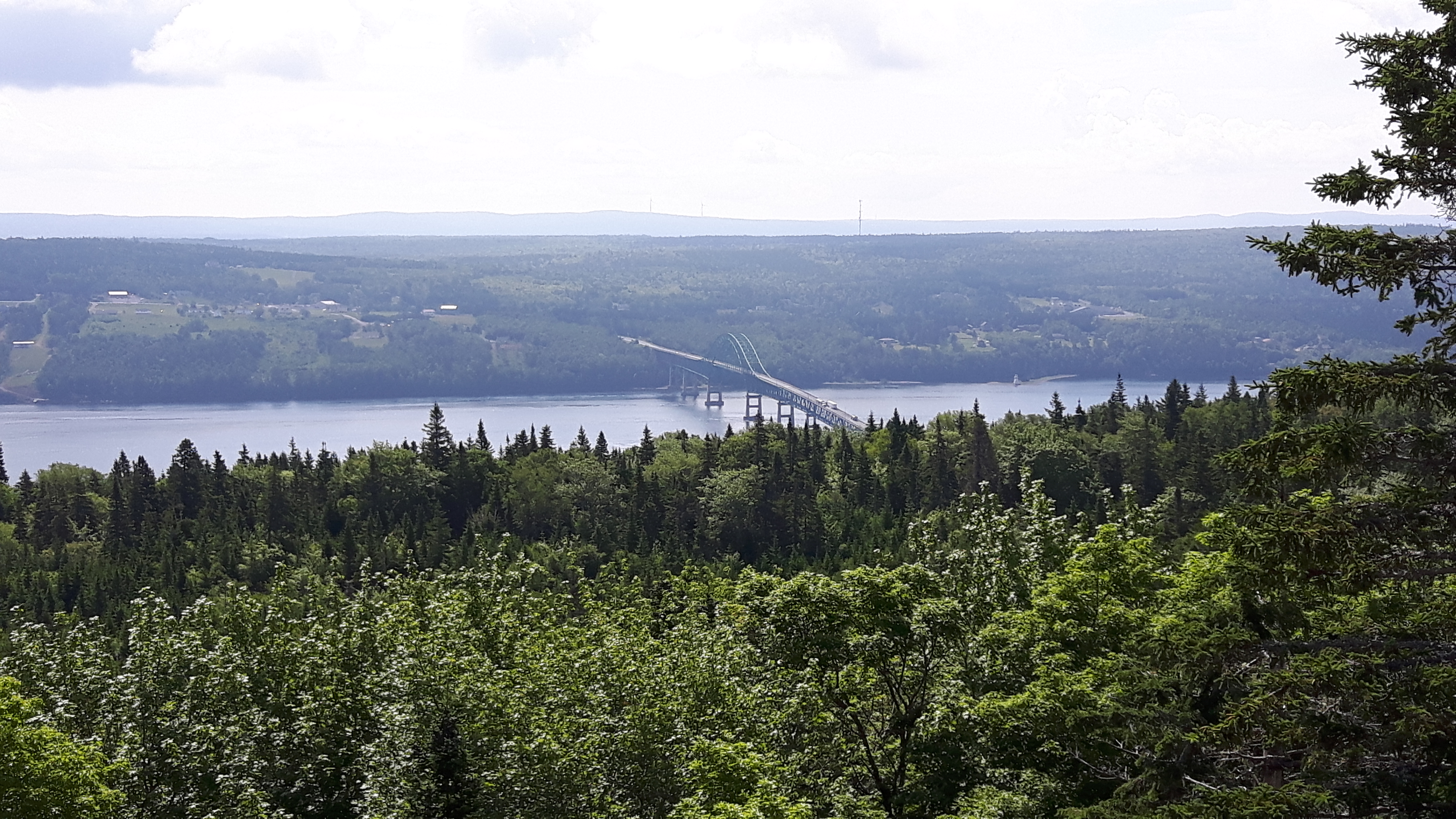Great Bras D'Or