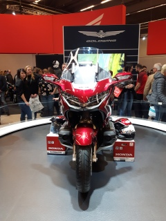 GoldWing_front