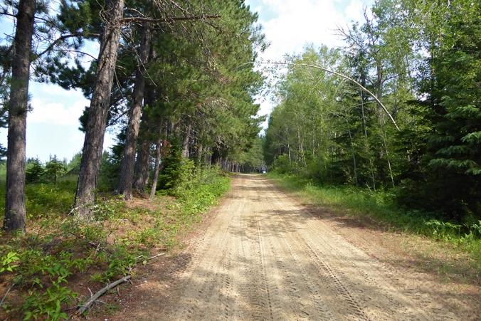 Pepiniere Trail_web
