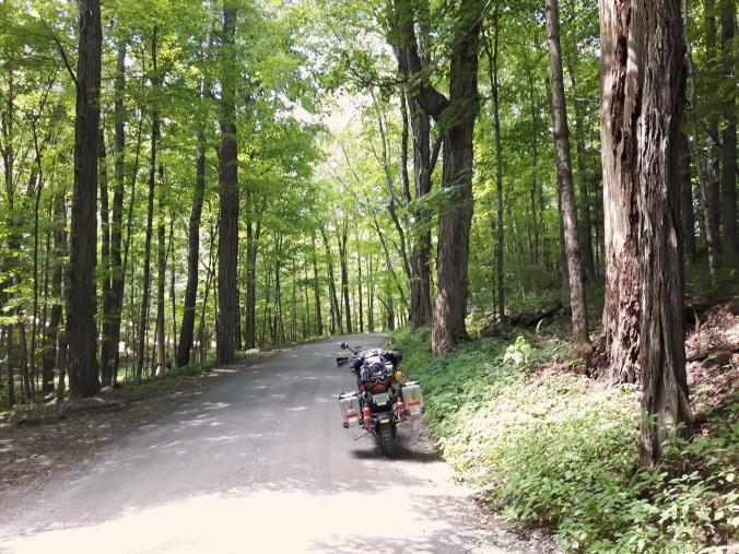 Trail and Bike